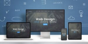 precio pagina web