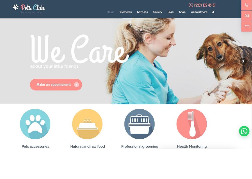 diseño web para veterinarios