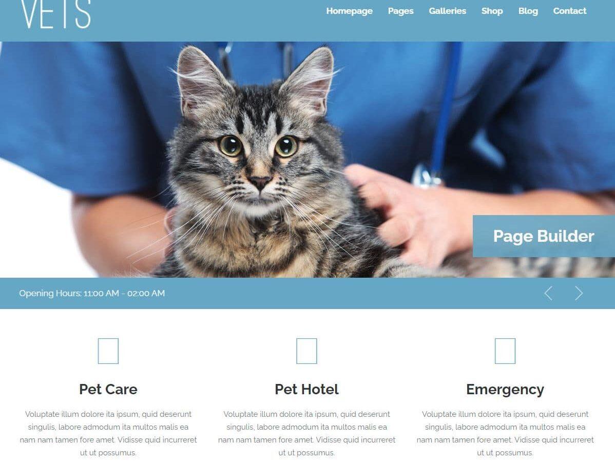 plantilla_diseño_web_veterinarios2